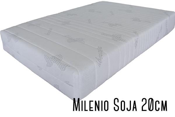 milenio-soja-20