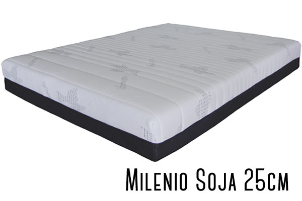 milenio-soja-25